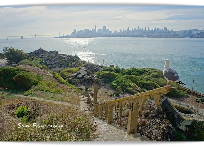 sf_alcatraz42