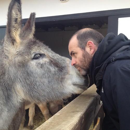 Mr. and Mrs. Donkey