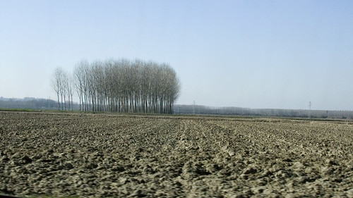 Po Valley landscape