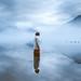 Be Still by Elizabeth Gadd