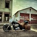 Indian Chief At The Old Sanderson Firehouse