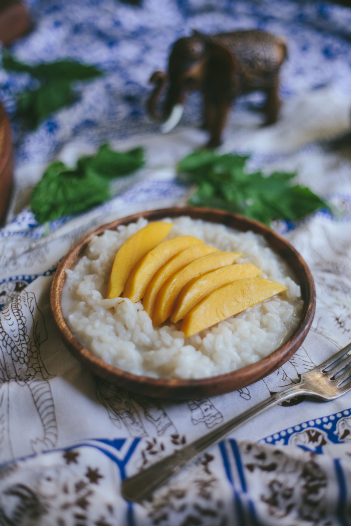 Mango with Sticky Rice | Adventures in Cooking