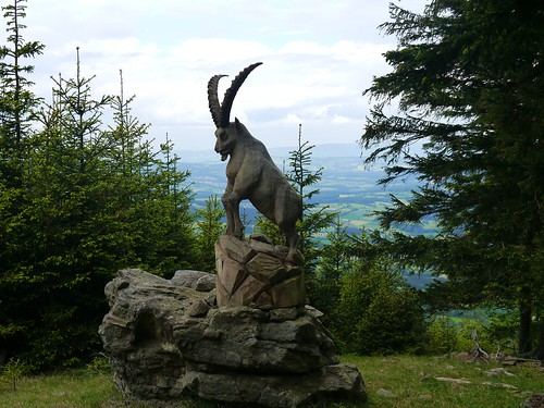 Steinbock aus Holz / Ibex from wood