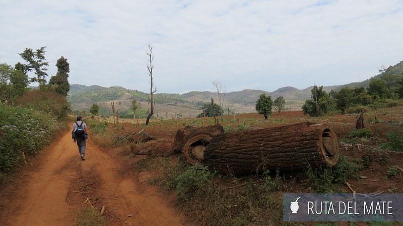 Hsipaw Pankam Myanmar (9)