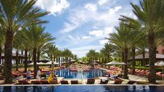 The Cove Pool - Atlantis