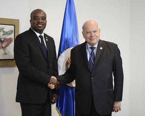 El Secretario General de la OEA se reúne con el Canciller de Haití