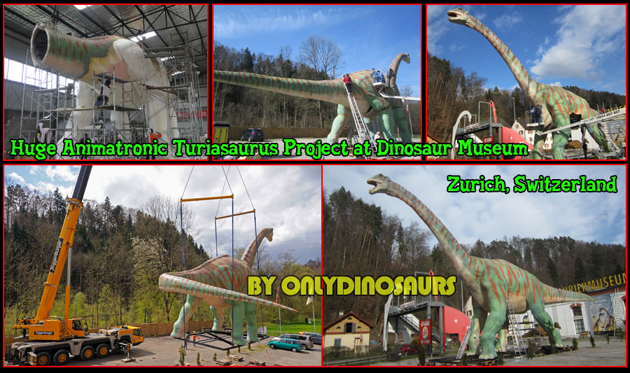 Huge Animatronic Turiasaurus is assembled