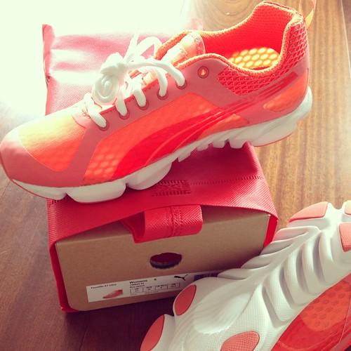 Puma formlite shoes