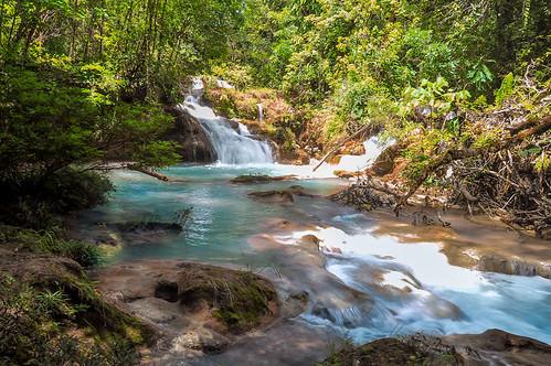 Cascadas de Agua Azul (21)