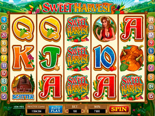 Sweet Harvest slot game online review
