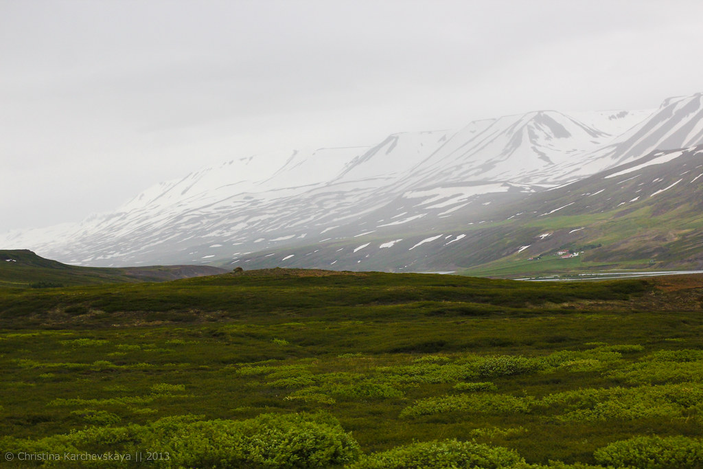 Iceland, Day 4 [73]