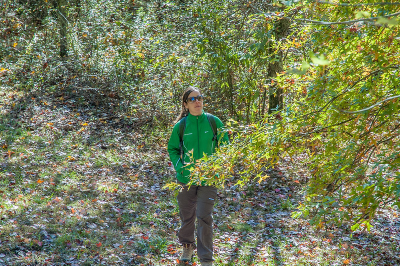 Little Africa Wildlife Viewing Area - Yellowwood State Forest - October 20, 2013