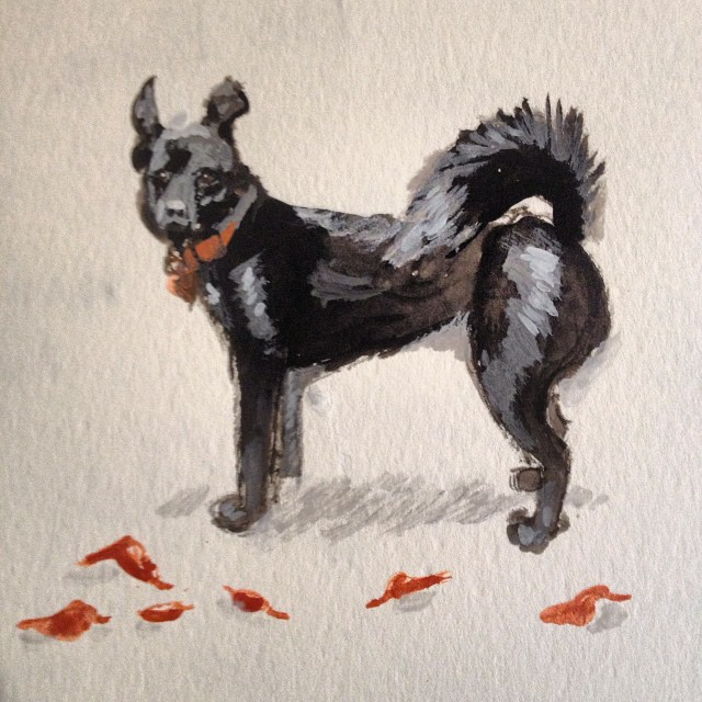 Working on a gift for a kind neighbor. #petportrait #dog #painting #meandwee #gouache