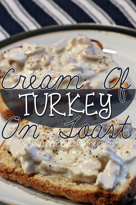 Cream of Turkey On Toast