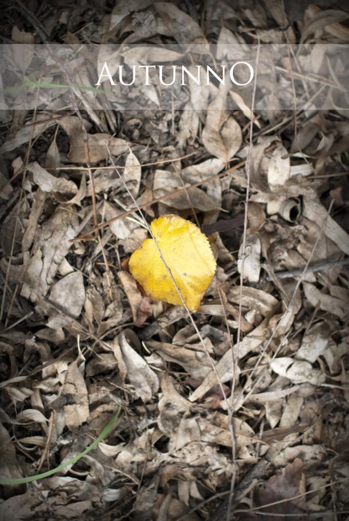 autunno 680