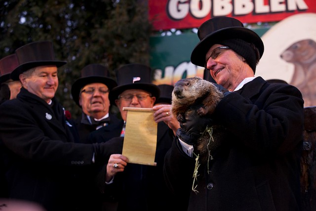 Punxsutawney Phil on Groundhog's Day in Gobbler's Knob