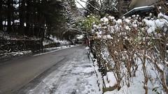 UNESCO World Heritage Site, Nikko, Japan (2010)