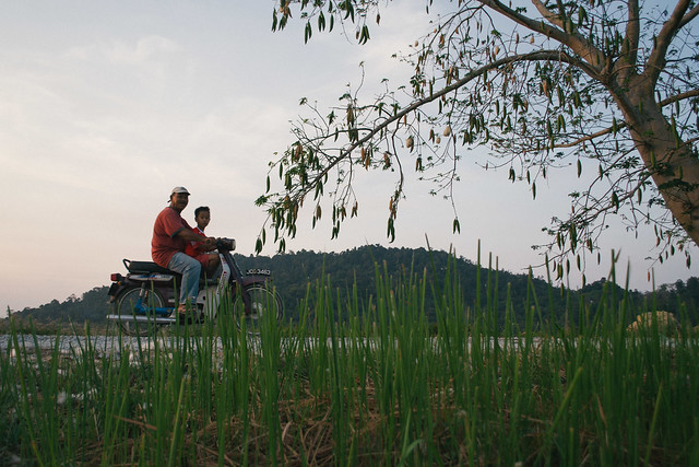 A paddy farmer and his grandson pass us by.