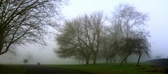A Ghostly Winter's Day