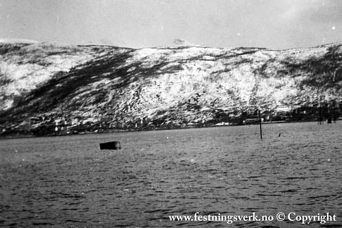 Narvik (2101)