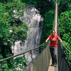 garden(0.0), water feature(0.0), park(0.0), adventure(1.0), rainforest(1.0), suspension bridge(1.0), tree(1.0), canopy walkway(1.0), forest(1.0), rope bridge(1.0), jungle(1.0), bridge(1.0),