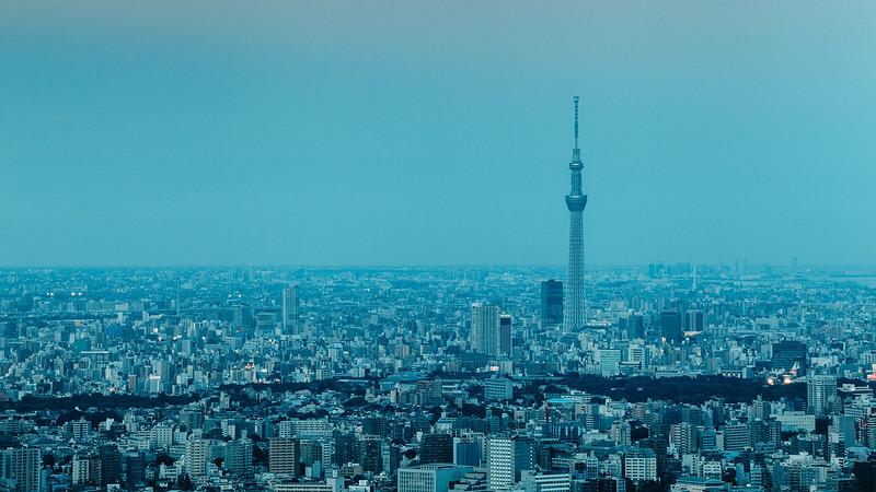 Skytree.