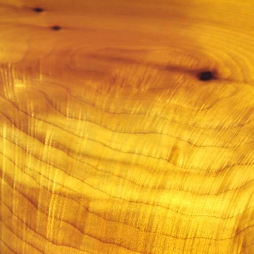 Western Cedar Texture