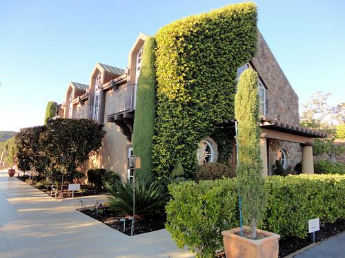 Signorello Estate Winery, Napa Valley, California, USA