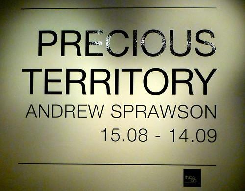 Precious Territory by Andrew Sprawson
