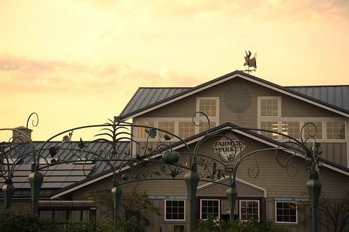 When pigs fly, building, decorative metal framework, Farmers Market, Olympia, Washington, USA by Wonderlane