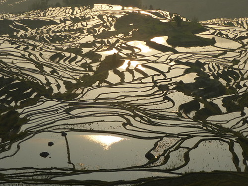 Yunnan13-Yuanyang 1-Duoyishu (109)