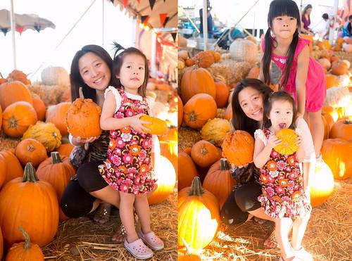 pumpkinpatch20
