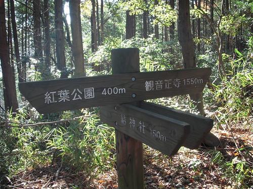 観音正寺参道
