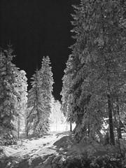 Vinter Kilsbergen
