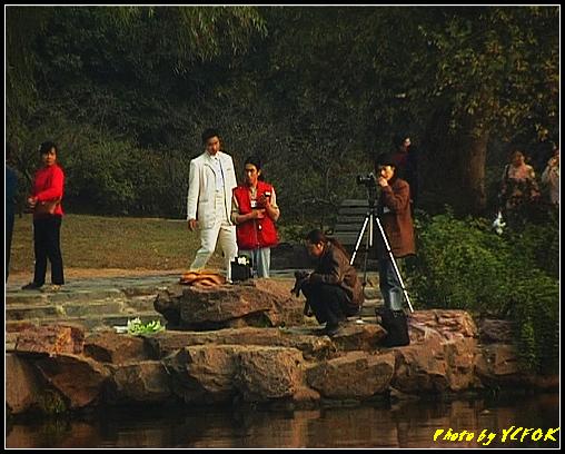 杭州 西湖 (其他景點) - 685 (北山路湖畔 孤山公園內 拍攝婚紗相)