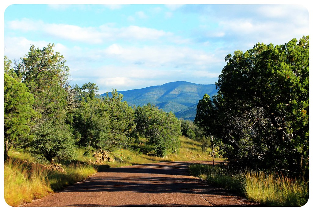 gila wilderness road