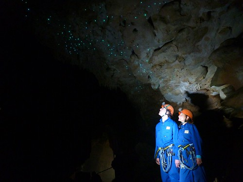 Waitomo Lost World Cave glow worms