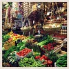 Food lovers paradise! One of the merchants in the enormous Mercato Centrale in Florence, Italy