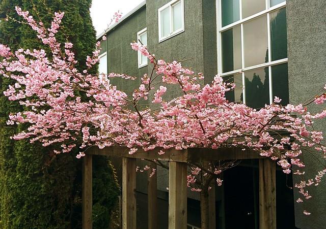 Spring on 4th Street