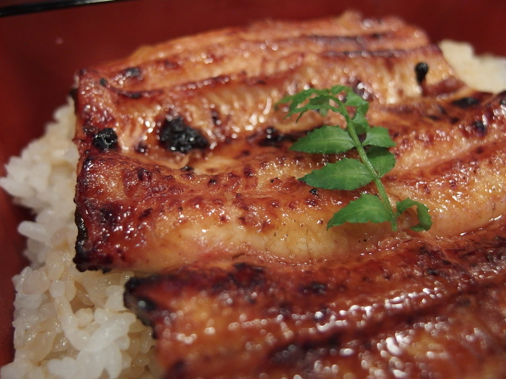 Unaju (Grilled eel on rice in box) @ Unatetsu @ Kabukicho