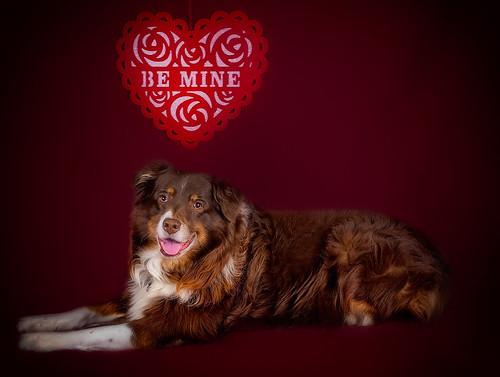 44/365 - My heart belongs to you