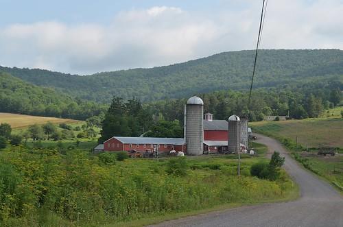 barn farm delawarecountyny bovinany