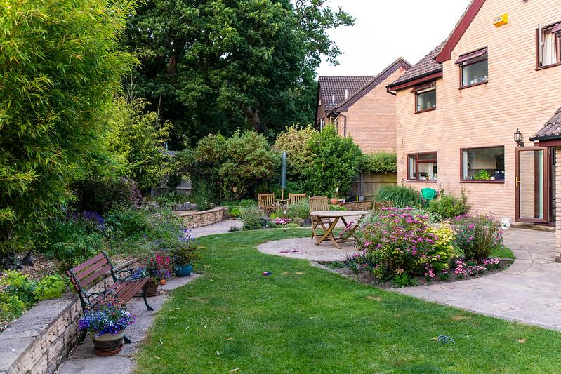 The garden this evening
