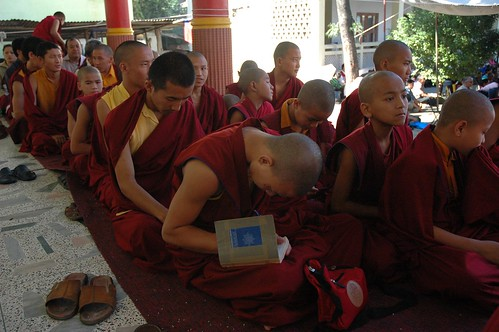 Young Tibetan Buddhist monk writing notes in a book, brother monks in maroon robes, Sakya Lamdre, Tharlam Monastery of Tibetan Buddhism, courtyard stage, Boudha, Kathmandu, Nepal by Wonderlane