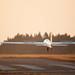 16th FAI World Glider Aerobatic Championships/4th FAI World Advanced Glider Aerobatic Championships - 26 July 2013