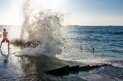 Dompteur de vague