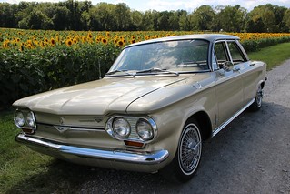 sunflower corvair