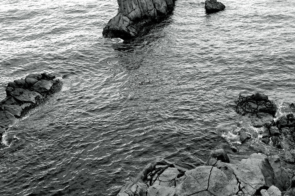 the Japan Sea