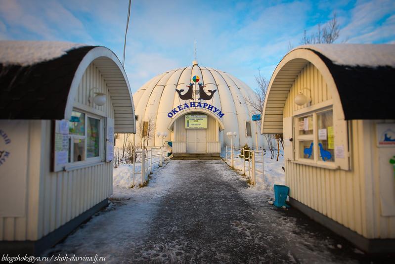 Мурманск-41