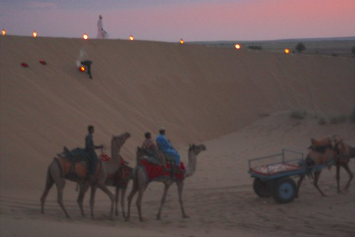 after the sun set, the camels make their departure